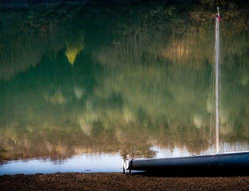 Barche Di Acqua Dolce