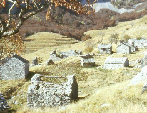 Garfagnana arcaica